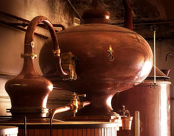 grand champagne cognacs