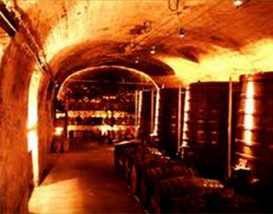 Cognac-Dupeyron-cellar