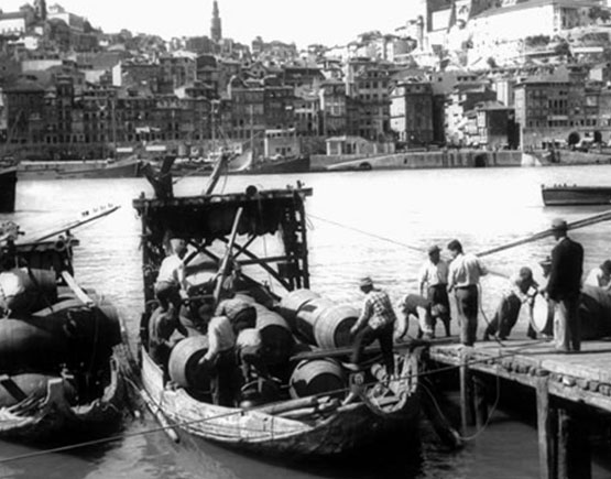 fonseca boat