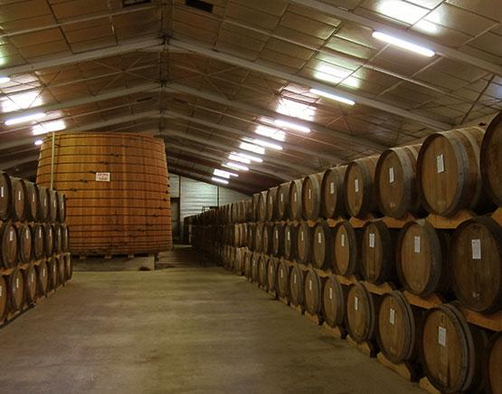 Armagnac-de-Montal-cellar