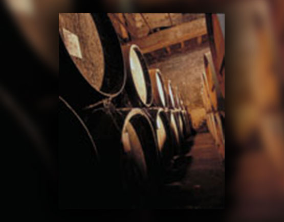 Armagnac-Baron-de-Saint-Feux-barrels