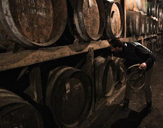 Armagnac-Chateau-de-briat-barrels