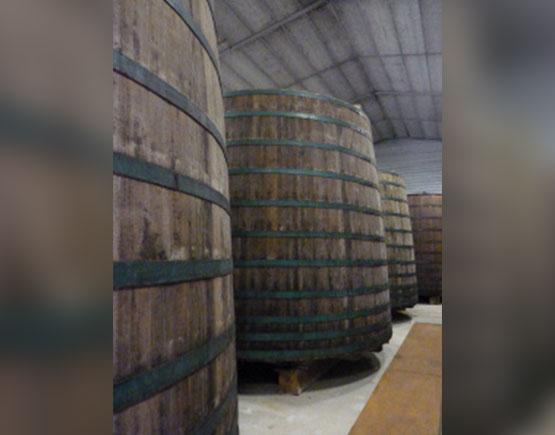 Cider Production