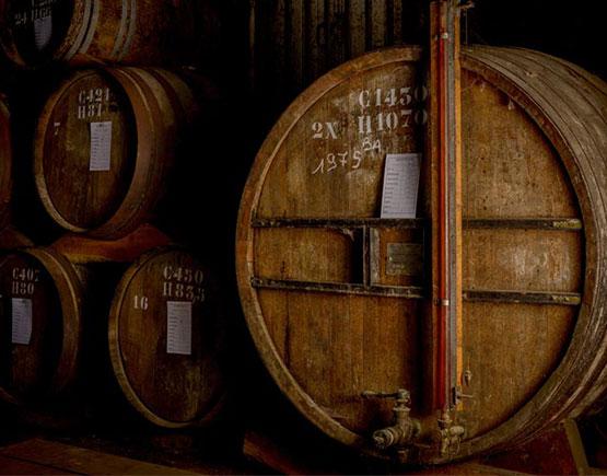 Armagnac-Jean-Cave-barrels-cellar